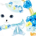 デザイナー・イラストレーター/オオカワアヤ